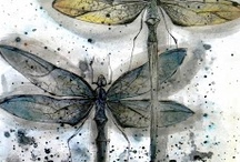 Dragonfly / by Barbara McCormack
