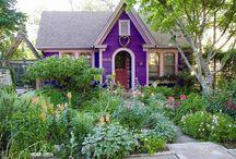 Gardening / by Ann Traynor-Plowman