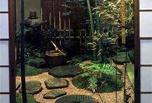 Gardens / by Kim Dellow