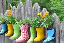 gardening / by Amanda Coughlin
