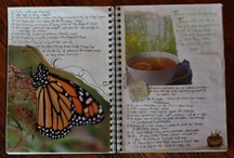 Journal Keeping Inspiration / Ideas for different types of books or journals / by Diane Baker-Williams