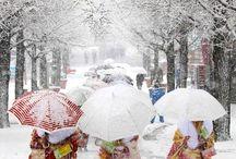 beautiful umbrellas / by Arlene Stakic
