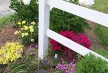 Garden / Flower garden tips and ideas / by Whatzername ;-)