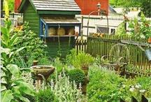 Jardin / Gardening inspiration / by Candace Camling