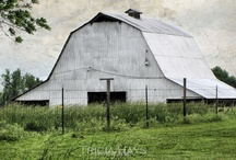 Barns / by Jessica Sumner