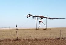 South Dakota  177 / by Betty jo