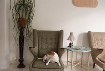 Home: Furniture / by Caro Williams