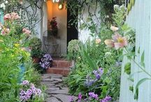 Garden / by Brittany Kutter