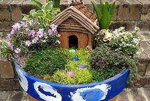 Fairy gardens / by Lola Marie
