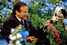 Movies I love... / by Roberta Aranda DeTomasi