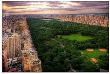 newyork♥ / by Alexis Dimmer
