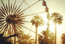 coachella. see you eventually / by Rachel Capps