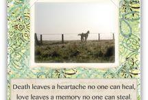 Horse Sympathy Cards / by Simple Sympathy