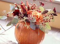 Fall Projects / by KATV Good Morning Arkansas