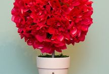 Topiary, Round Ball Decorations, Bouquets, Pomander / by Andrea Hans