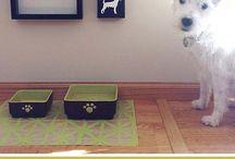 doggy decor / by Elise Myers