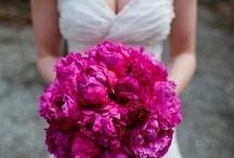 Wedding Flowers / by Ellen Rocha