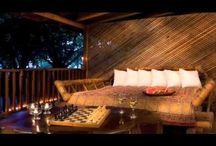 Videos / Videos of Hotel Tropico Latino Hotel / by Hotel Tropico Latino