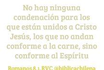 Romanos 8 / La carta del apóstol Pablo a los romanos muestra la centralidad de Jesús en la Biblia / by Sociedad Biblica Chilena