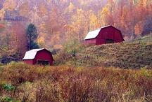 barns / by Rebecca Castro