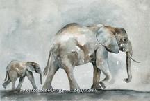Elephants / by Carolyn Prahin
