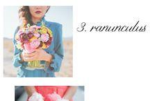 Wedding Ideas / by Emily Gardner