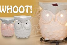 Everything Scentsy / All pictures are about Scentsy in some shape or form / by Kim Charette