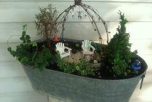 mini gardens / by Danielle MacCoumber