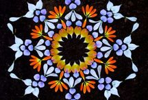 Flowering / by Manu Mel