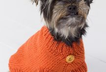 Dog Sweaters / by Anne Robertson