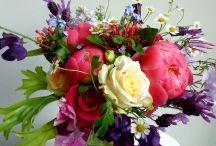 Flowers / by Janice Hallman