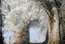 N A T U R E. Breathtaking.  / by Jodie Lagana