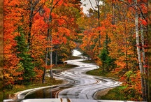 THE LONG AND WINDING ROAD / by Terry Hobson