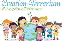 Bible Science Experiments / by Christianity Cove