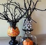 Halloween / by Traci Thrush