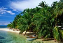 Panama / by Fern Haven