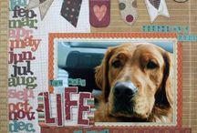 scrapbook layouts / by Jennifer Haines