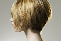 Haircuts/Color / by Lindsay Storm