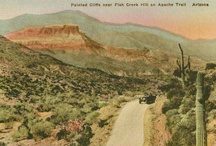 Post cards of all 50 States. / by Ruth Swartz