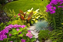 Beautiful gardens and Yards / by Phyllis Simpson
