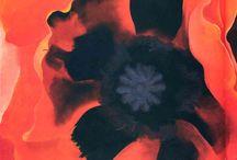 poppies / by Gratzy