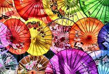 Parasol Paradise. / by Cheryl Watson