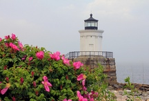 Lighthouses / by Janet Reneau