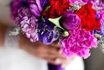 Julie / by Dandie Andie Floral Designs