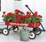 Gardening ideas / by Janelle Shumpert