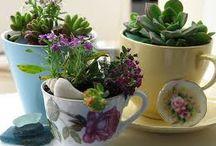 growing green / by enid jesse