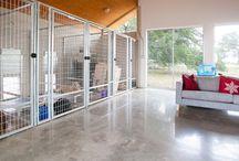 If I had a dog rescue/sanctuary / by Sara Magoun