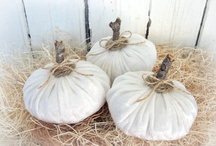 Autumn - Whites / Soothing Autumn decorations / by Linda