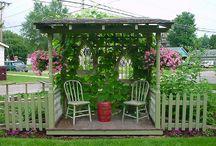 Garden Ideas / by Kimberly Siemer