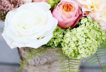 floral / by Lauren McDonnell